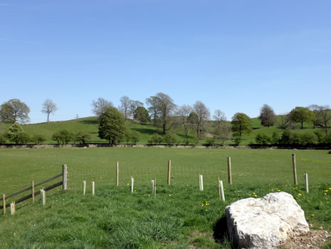 our surroundings in natland near kendal on the edge of. Black Bedroom Furniture Sets. Home Design Ideas